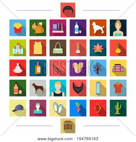 , accessories, textiles, medicine and other  icon in flat style.gate, tourism, business icons in set collection