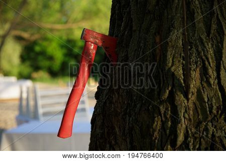 glamorous Red Ax stucking in the tree