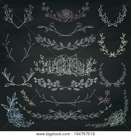 Chalk Drawing Hand Drawn Herbs, Plants and Flowers, Florals. Decorative Branches, Laurels on Chalkboard Texture.Vector Illustration