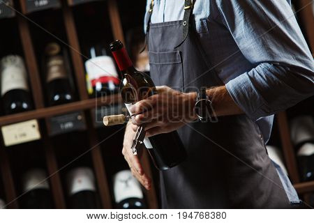 Sommelier holding bottle of red wine in cellar on background of shelves with elite alchoholic drinks, best choice in winemaking
