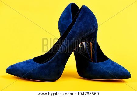 Shoes In Dark Blue Color. Pair Of Formal Female Shoes