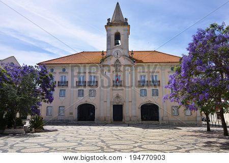 Blooming wisteria and view on the Common Hall Camara Municipal de Aveiro in Praca da Republica of Aveiro Portugal
