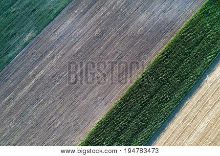 Farmlands Shoot From Air