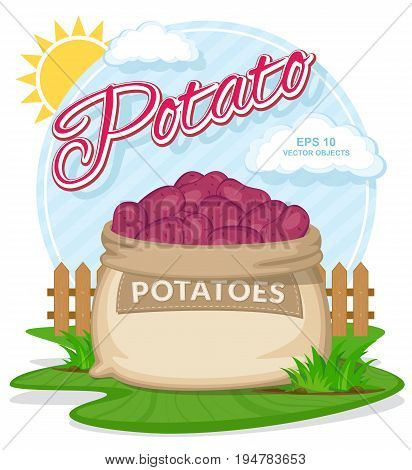 Vector illustration of eco products. Red Potatoes in burlap sack. Full sacks with fresh vegetables. Bag with harvest on the summer garden. Harvesting and food concept