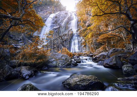 Autumn leaves with waterfall in deep forest  Khlong Lan Waterfall , Kamphaeng Phet Province, Thailand .