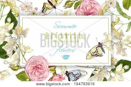 Vector botanical horizontal banner with rose, linden, jasmine flowers and butterflies. Design for tea, natural cosmetics, sweets and choclate packaging.Can be used as greeting card, wedding invitation