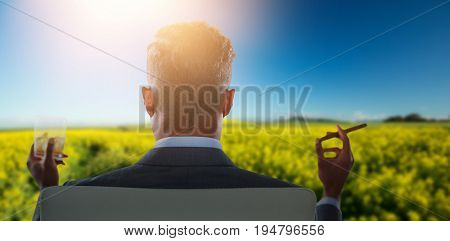 Rear view of businessman holding whisky glass and cigar against yellow mustard field
