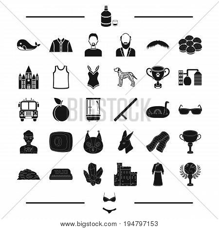 clothes, animal, award and other  icon in black style. prize, appearance, hair, travel icons in set collection.