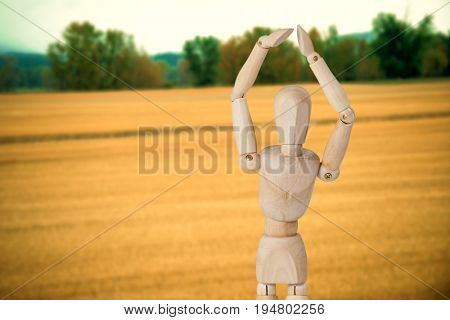 Wooden 3d figurine standing with hands raised against view of grasslands