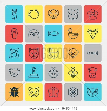 Zoo Icons Set. Collection Of Serpent, Bear, Kitten And Other Elements. Also Includes Symbols Such As Bear, Baboon, Kine.