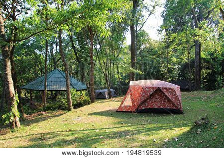 Travel To Doi Suthep National Park, Chiang Mai, Thailand. The View On The Mountain Camping With An A