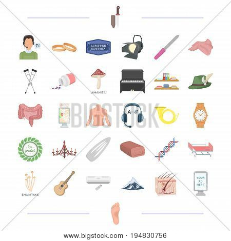 body, medicine, organ and other  icon in cartoon style. equipment, tool, food icons in set collection.