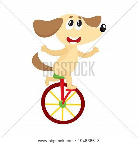 Cute little dog, puppy character riding bicycle, tricycle, cycling, cartoon vector illustration isolated on white background. Little baby dog, puppy animal character riding bike, bicycle, unicycle