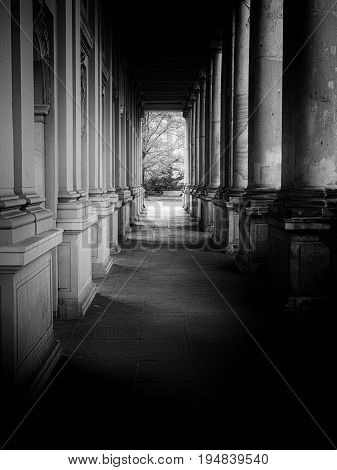 Colonnade: Row of Columns black and white
