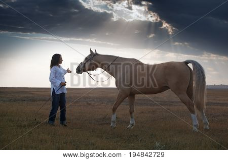 Woman training horse in the steppe during sunset