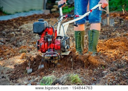 Farmer plows the land with a cultivator and preparing it for planting vegetables