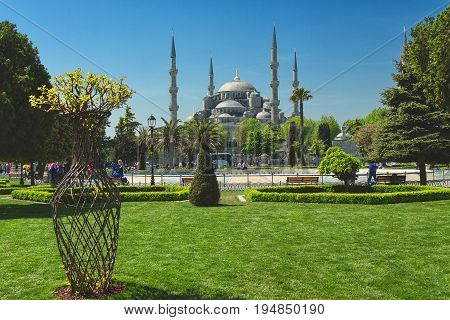 View of Sultan Ahmed Mosque Blue Mosque and fountain from the Sultanahmet Park in spring time in Istanbul Turkey