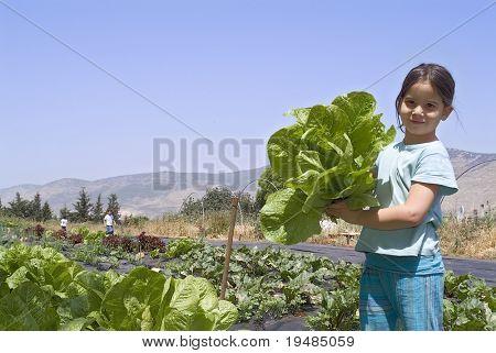 girl holding lettuce in vegetable garden