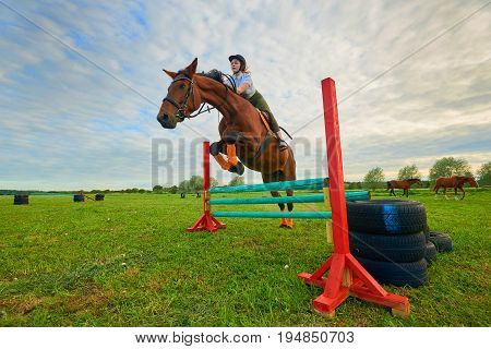 Pretty young girl jockey and her horse jumper