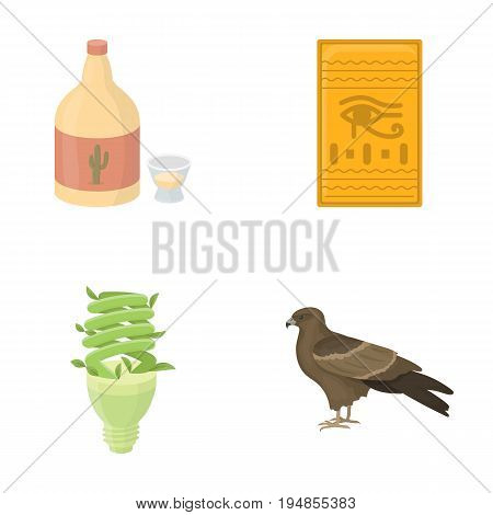 alcohol, lighting and other  icon in cartoon style.history, animal icons in set collection.