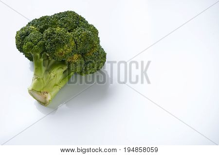 Close-up of a Healthy Green Organic Raw Broccoli Floret isolated on white background with copy space. Helathy vegetarian food and detox concept.