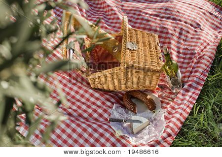 picnic basket with wine, cheese and salami outdoors