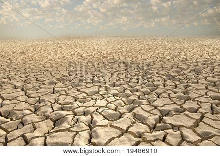 cracked soil pattern in the Zin valley, Arava, Israel.