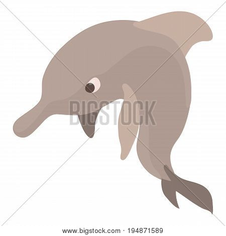 Dolphin icon. Cartoon illustration of dolphin vector icon for web isolated on white background