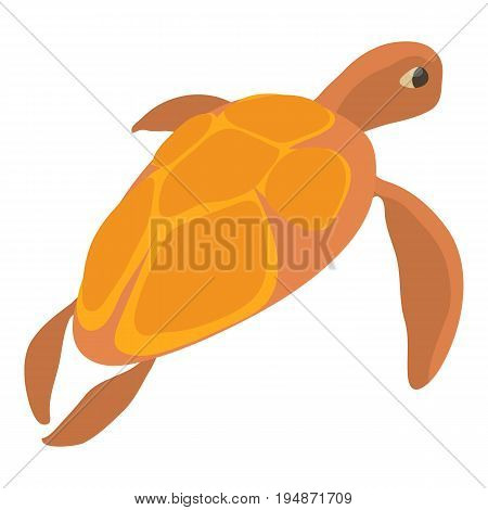 Turtle icon. Cartoon illustration of turtle vector icon for web isolated on white background