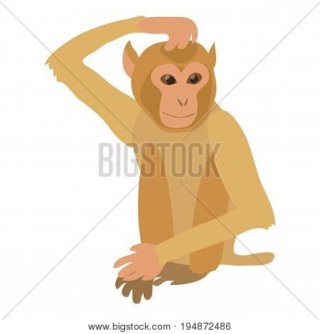 Brooding monkey icon. Cartoon illustration of brooding monkey vector icon for web isolated on white background poster