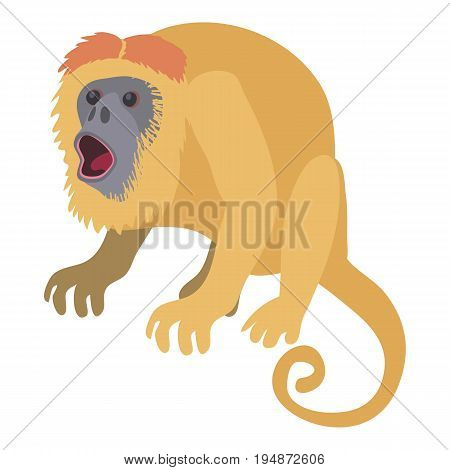 Surprised monkey icon. Cartoon illustration of surprised monkey vector icon for web isolated on white background