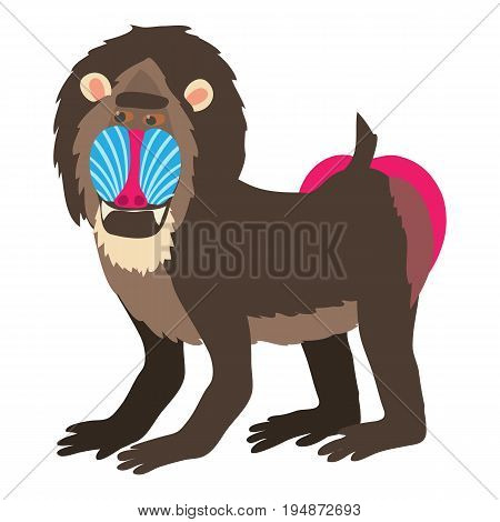 Mandrill icon. Cartoon illustration of mandrill vector icon for web isolated on white background