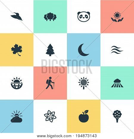 Vector Illustration Set Of Simple Nature Icons. Elements Spring, Fresh Food, Bear And Other Synonyms Panda, Flower And Sunrise.