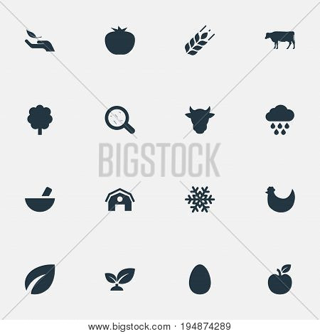 Vector Illustration Set Of Simple Ecology Icons. Elements Plant, Farmhouse, Storm And Other Synonyms Harvest, Easter And Bacteria.