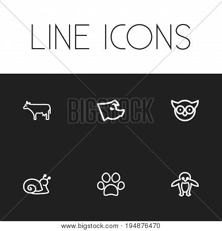 Set Of 6 Editable Zoo Icons. Includes Symbols Such As Escargot, Predator Bird, Piglet And More. Can Be Used For Web, Mobile, UI And Infographic Design.