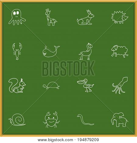 Set Of 16 Editable Animal Icons. Includes Symbols Such As Urchin, Slug, Pelican And More. Can Be Used For Web, Mobile, UI And Infographic Design.