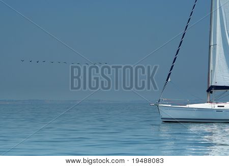 Bird above silent water and white yacht. It is a beautiful peace picture. Silence and rest. The world. The warm sea.