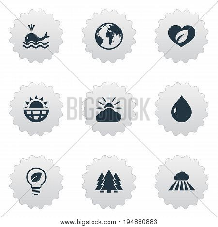 Vector Illustration Set Of Simple Geo Icons. Elements Cloud, Oil, Orca And Other Synonyms Soul, Lightbulb And Geography.