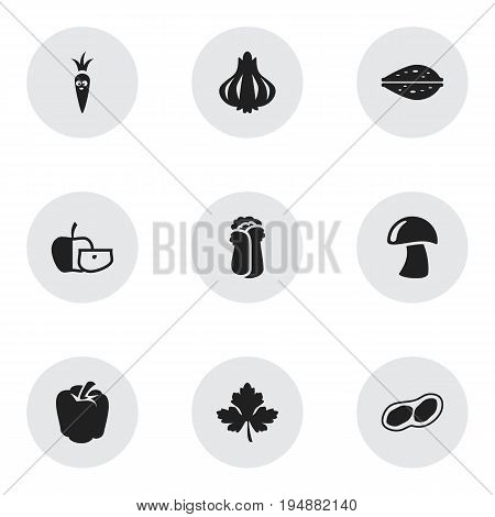 Set Of 9 Editable Kitchenware Icons. Includes Symbols Such As Cauliflower, Leaf, Root Vegetable And More. Can Be Used For Web, Mobile, UI And Infographic Design.