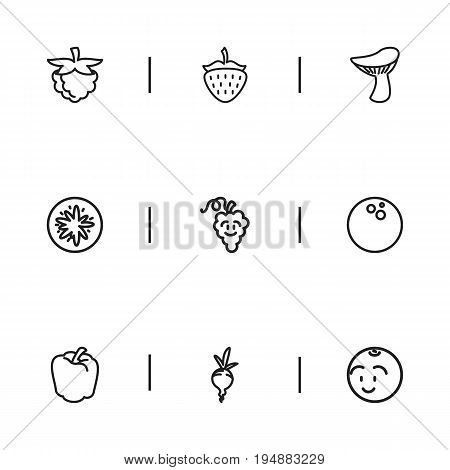 Set Of 9 Editable Kitchenware Icons. Includes Symbols Such As Cocos, Raspberry, Orange And More. Can Be Used For Web, Mobile, UI And Infographic Design.