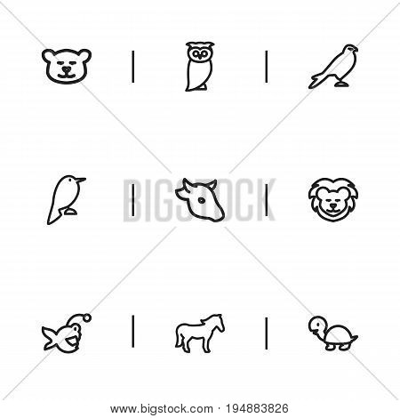 Set Of 9 Editable Animal Icons. Includes Symbols Such As Steed, Lion, Buffalo And More. Can Be Used For Web, Mobile, UI And Infographic Design.