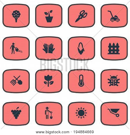 Vector Illustration Set Of Simple Garden Icons. Elements Horticultural Gauntlet, Apple Timber, Plougher And Other Synonyms Gardening, Machine And Corn.