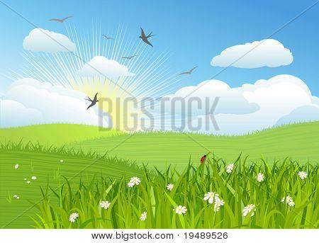 Beautiful sun day / Vector illustration