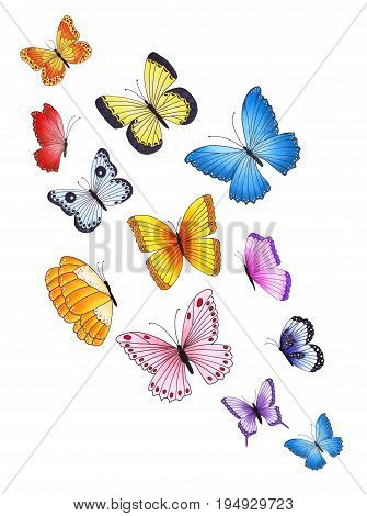 Set Of Colorful Butterflies. Hand Drawn Marker Illustration.