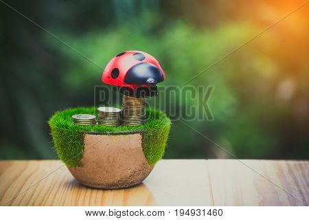Stack Of Gold Coin On Artificial Grass In Pot, On Wooden Table With Green Nature Background. Vintage