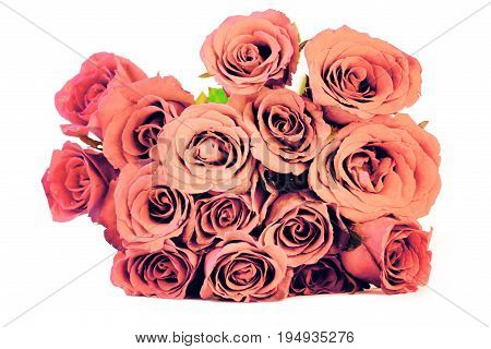 Pink vintage roses bouquet on white background, retro style process.