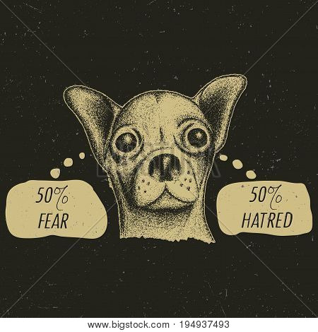 Stylish Chihuahua Poster with funny slogan 50 fear and 50 hatred in bubbles vector illustration