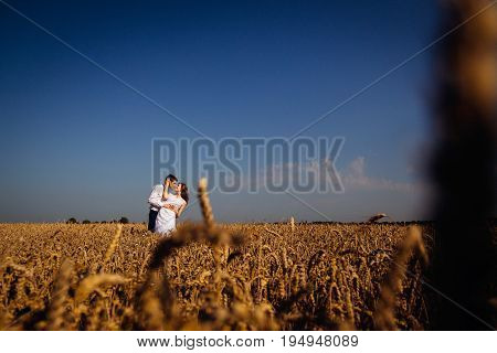 Bride And Groom Hug Under Blue Sky Standing In The Fich Field Of Wheat