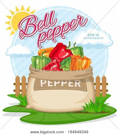 Vector illustration of eco products. Ripe Bell Pepper in burlap sack. Full sacks with fresh vegetables. Bag with harvest on the summer garden. Harvesting and food concept