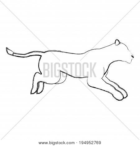 female lion african animal courageous creature vector illustration